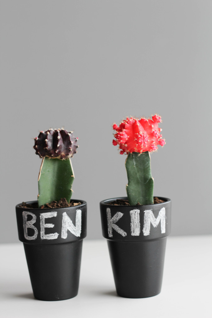 DIY Cactus and Chalk Place Cards-4