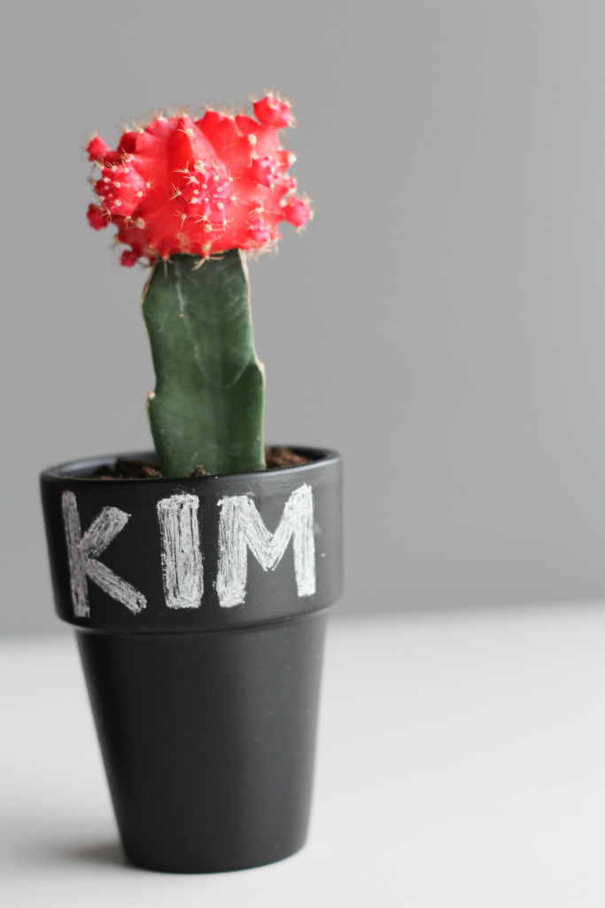 DIY Cactus and Chalk Place Cards-6