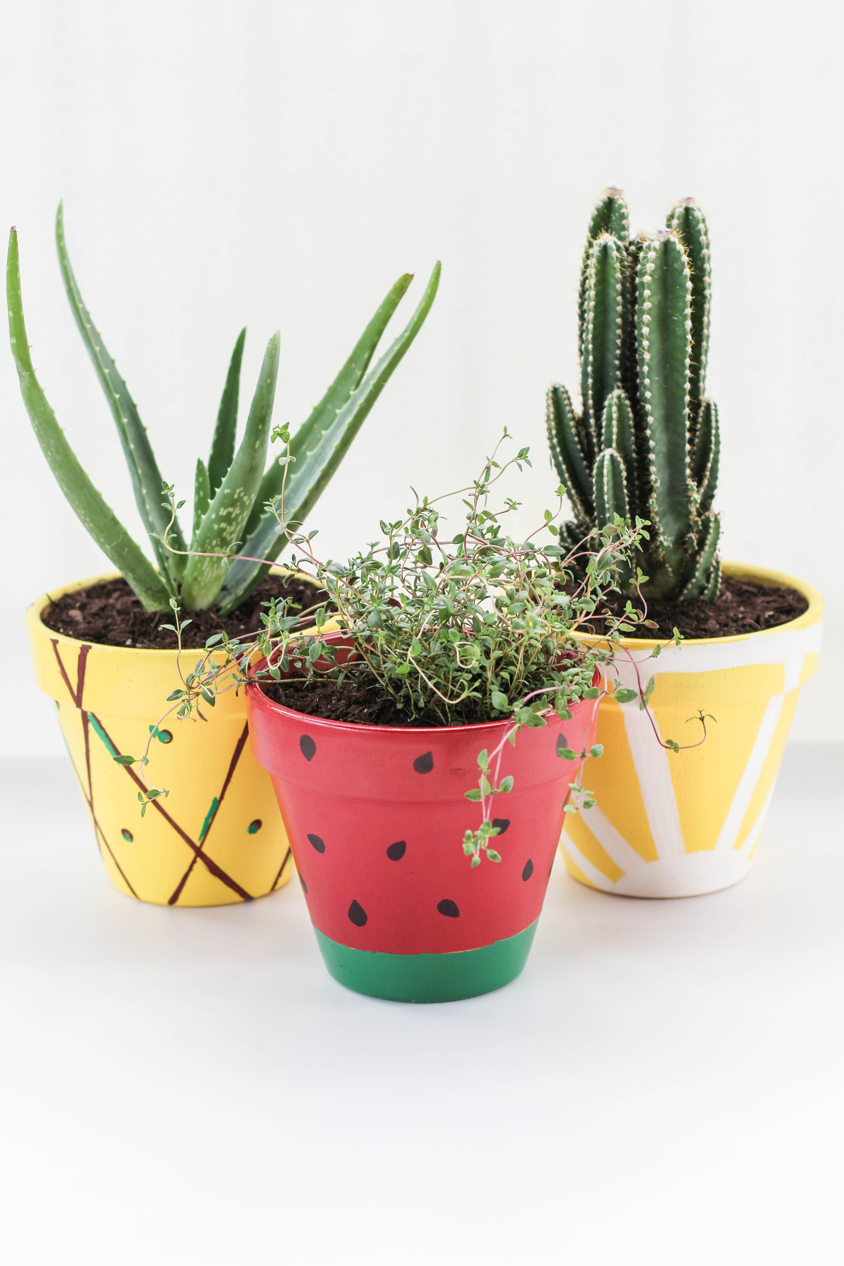 diy fruit planters let 39 s mingle blog. Black Bedroom Furniture Sets. Home Design Ideas
