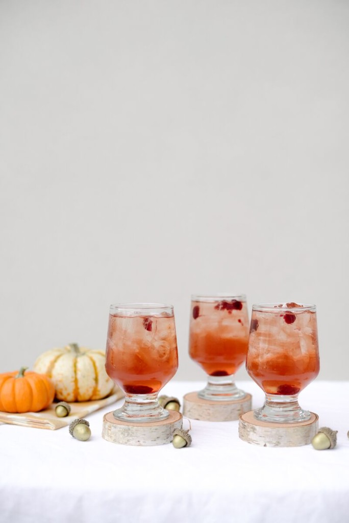 Cranberry Splash Cocktail