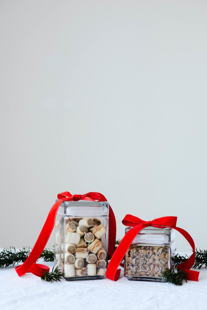 Glass Etched Pet Treat Jars