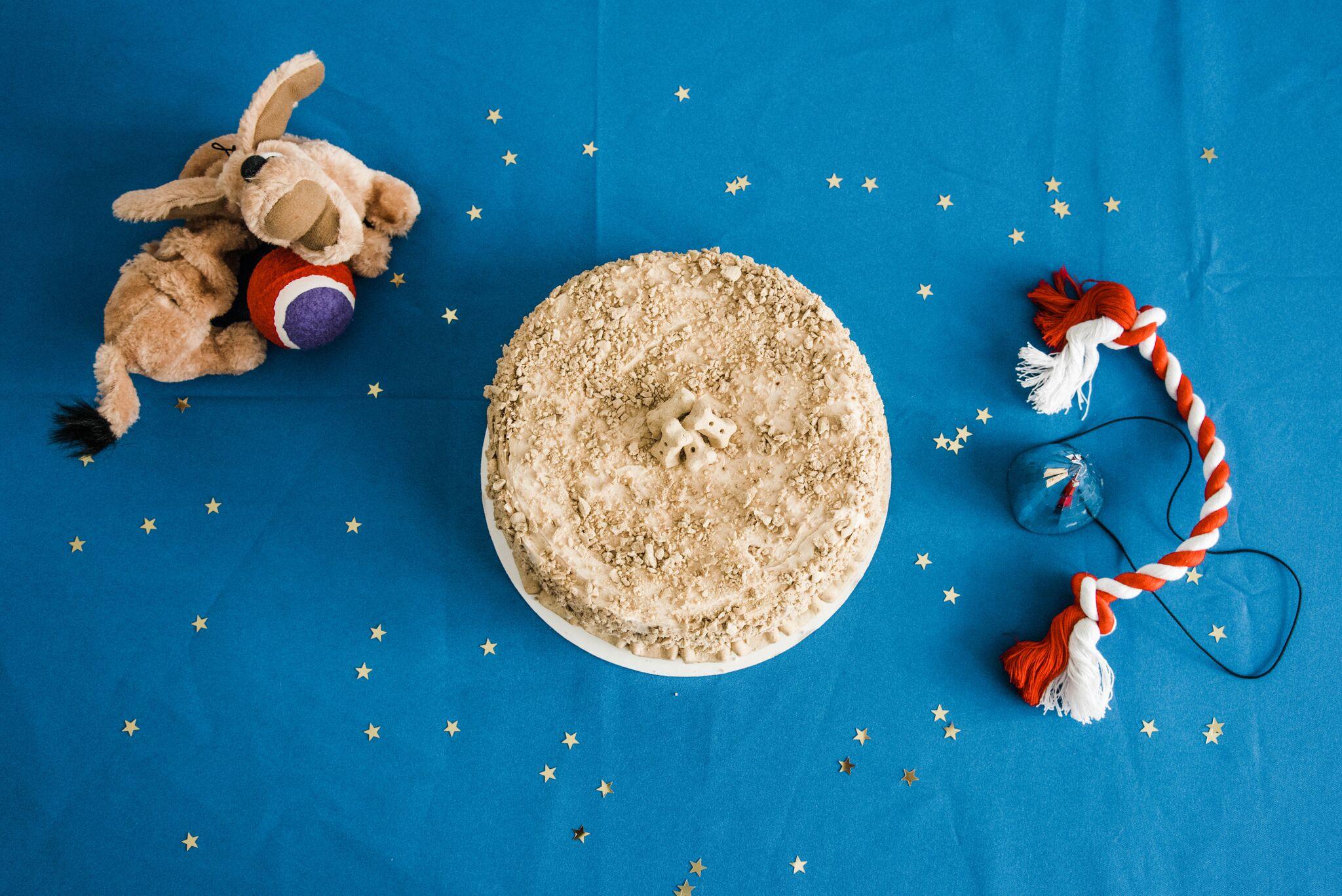 Small Birthday Cake Recipe For Dog