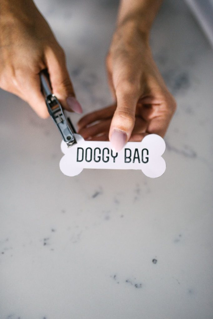 Printable Dog Gift Tags