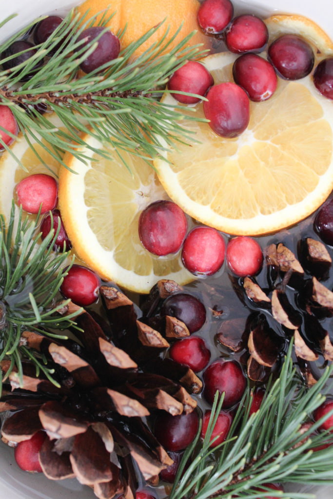 Stove Top Holiday Potpourri