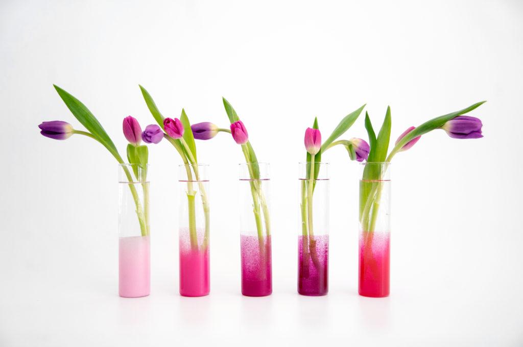 DIY Ombre Bud Vases
